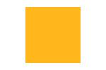 Beelieve | Social Impact Brand